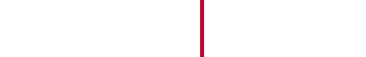 FECON Connect Logo